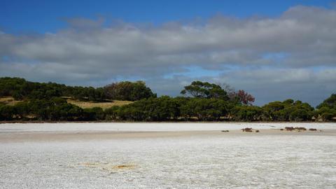 Australian landscape #2 Footage