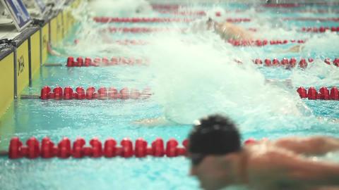 Swimming Lane Marker Footage