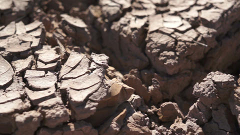 Dry Cracked Earth Closeup Footage
