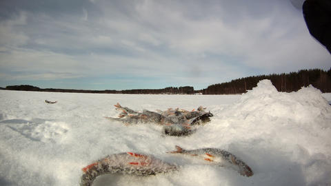 Ice fishing time-lapse Animation