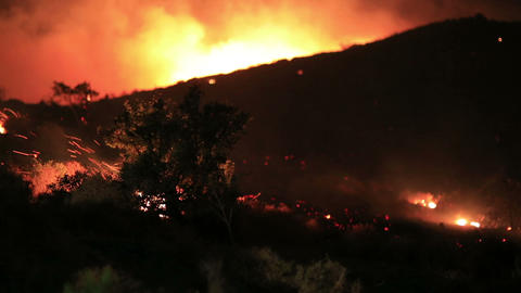 fire in forest at night Footage