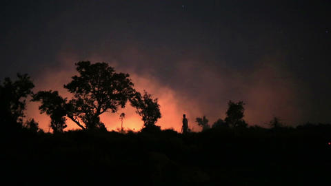 firefighters at night forest fire Footage