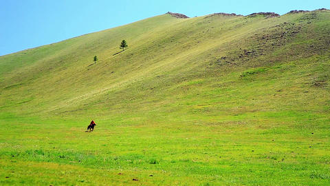 Man riding horse in Mongolian landscape Footage