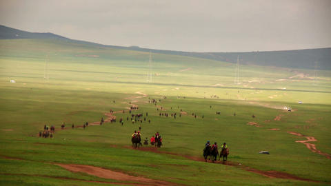 Stallion Horse Race 2013 Finals, Mongolia Footage