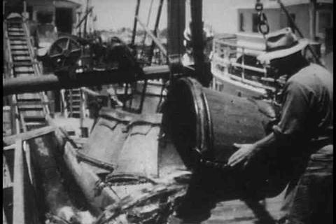 San Diego in 1947 including fish canning, Navy bas Footage