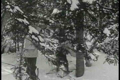 The logging industry in Quebec Canada in 1937 in w Footage