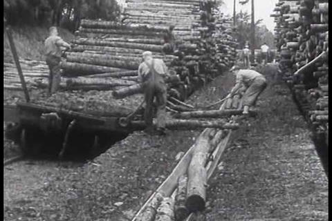 Excellent montage of a lumber mill in action in 19 Footage