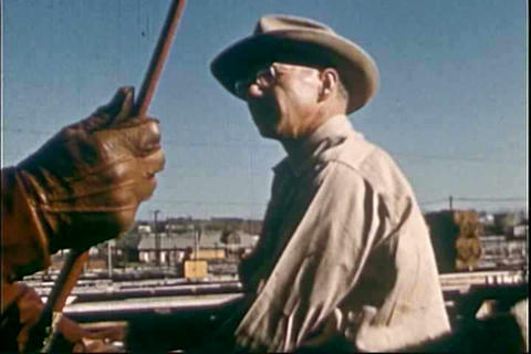 Activities at the stockyard in 1955 Footage