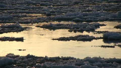 Ice drift in a river at sunset 11 Stock Video Footage
