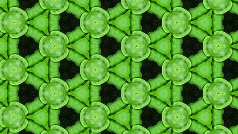 Organic kaleidoscope from growing radish vegetables 14a Animation