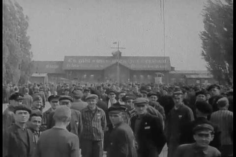 Footage of Dachau Nazi Concentration Camp victims Live Action