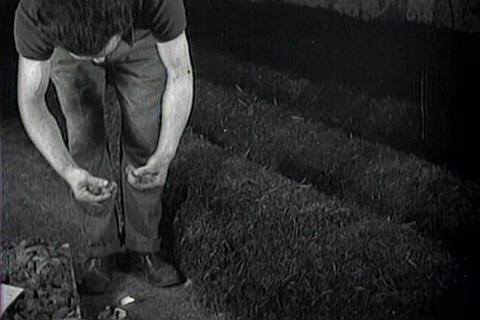Captured Italian war film from 1942 shows mushroom Footage