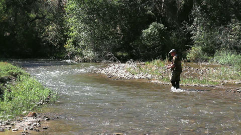 Trout Fishing Live Action