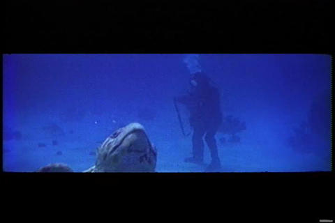 Underwater scuba diving footage from a 1950s wides Footage