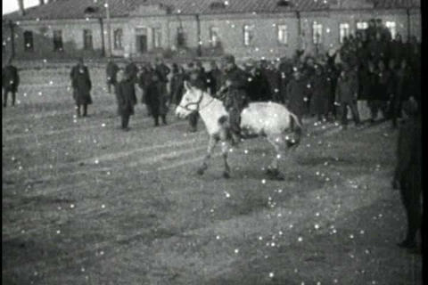 Activities in Siberia and Russia during World War  Live Action