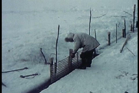 Eskimos in the Arctic go on a hunt with a dogsled  Live Action