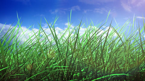 Grass and sky Animation