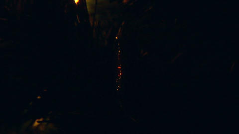christmas light tree 04 Stock Video Footage