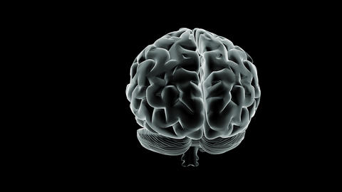 Brain Spin Stock Video Footage