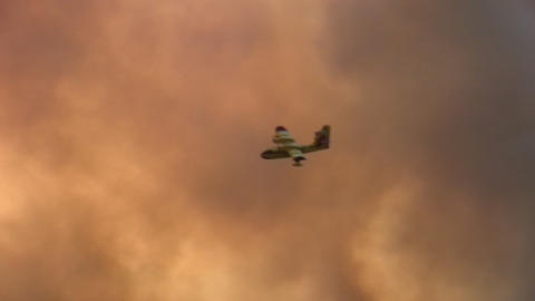 Forest fire - MA 2007waldbrand10 Footage
