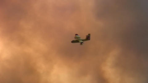 Forest fire - MA 2007waldbrand12 Stock Video Footage