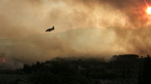 Forest fire - MA 2007waldbrand14 Stock Video Footage