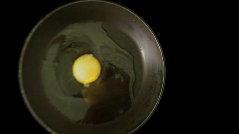 Eggy Stock Video Footage