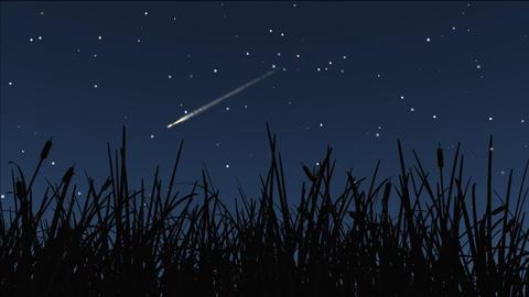 night stars 15 Stock Video Footage