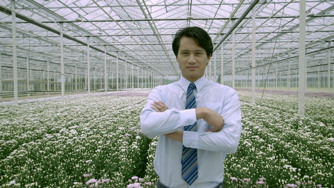 Man Standing In Greenhouse stock footage