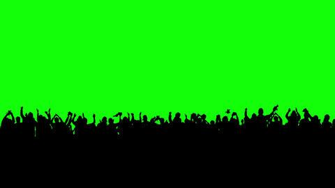 Crowd of people. Green screen Footage