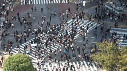 Shibuya crossing by day, Tokyo Footage