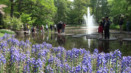 Tourists In Keukenhof, Holland stock footage