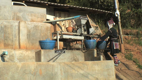 Coffee Processing Footage