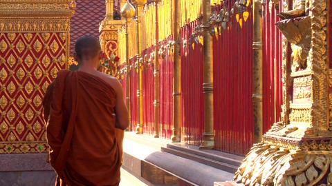 Monks Temple Walk stock footage
