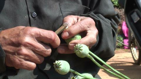 Opium stock footage