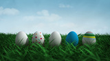 Easter Egg Bloom stock footage