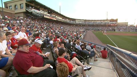 Baseball Fans 3 Footage