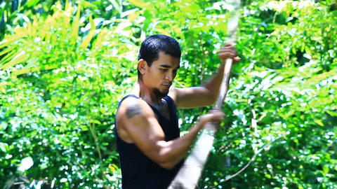 Plong or quarterstaff in traditional Thai martial  Footage