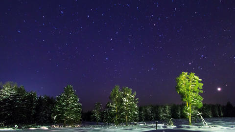 Night winter sky over the forest. Time Lapse. 4K Footage