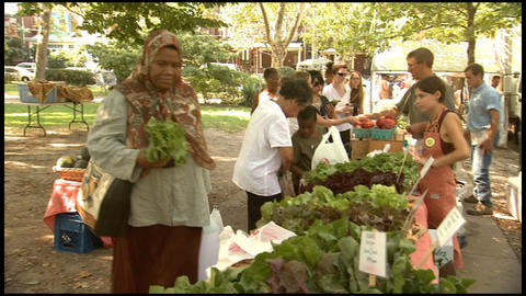Outdoor Farmers Market 2 Footage