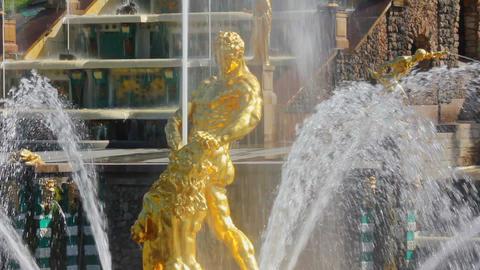 famous petergof Samson fountain in St. Petersburg  Footage
