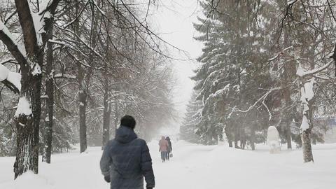 pedestrians walk on the sidewalk in a blizzard Footage