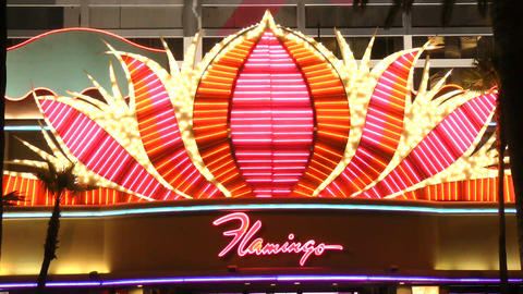 LAS VEGAS - CIRCA 2014: The Flamingo Las Vegas on  Footage