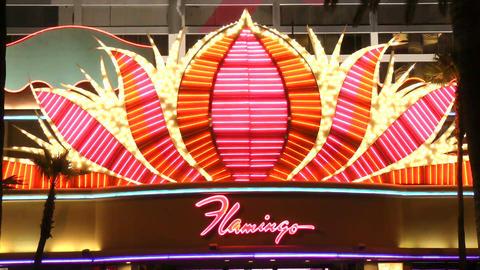 LAS VEGAS - CIRCA 2014: The Flamingo Las Vegas on  Footage