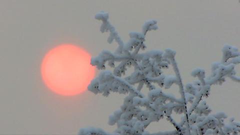 Winter 2 Stock Video Footage