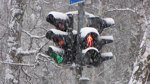 Snowfall 14 Stock Video Footage