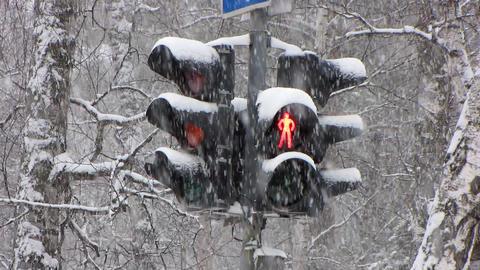 Snowfall 14 Footage