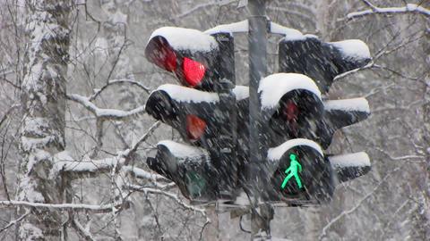 Snowfall 15 Stock Video Footage