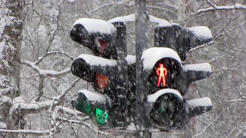 Snowfall 16 Stock Video Footage
