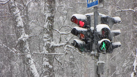 Snowfall 17 Stock Video Footage